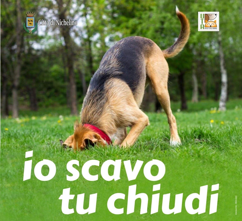 NICHELINO - Parte la campagna «Io scavo, tu chiudi» per «riparare» i buchi lasciati dai cani