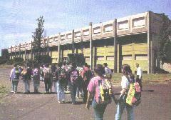 NICHELINO - Cerca di entrare a scuola senza Green Pass. Respinta, sporge denuncia